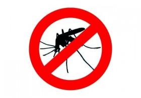 Soulager les piqûres de moustiques